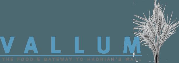 vallum-logo